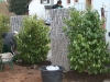 Bepflanzungen
